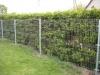 thumbs 6 Segmentinės tvoros